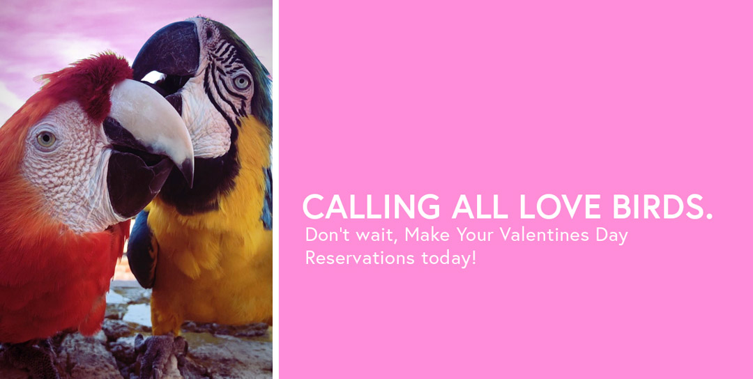 Calling all love birds. Don't wait, make your Valentines Day reservations today!